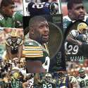 Green Bay Packers Reggie White 20 Trading Card Set