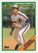 1988 Topps #25 Andres Galarraga Expos
