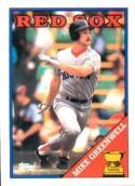 Mike Greenwell 1988 Topps All-Star Rookie Baseball Card #493